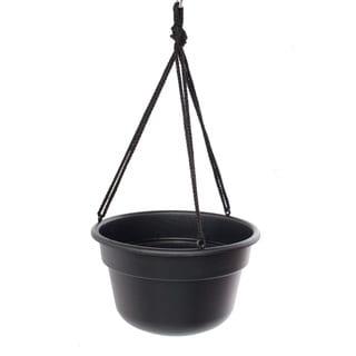 Bloem Dura Cotta Hanging Basket Black Planter (Pack of 12)