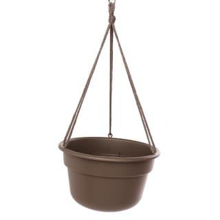 Bloem Dura Cotta Hanging Basket Curated Planter (Pack of 12)
