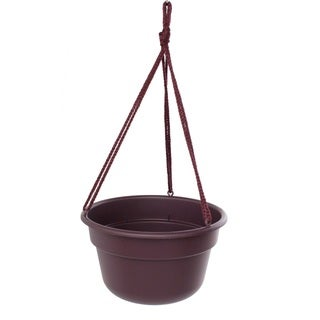 Bloem Dura Cotta Hanging Basket Exotica Planter (Pack of 12)
