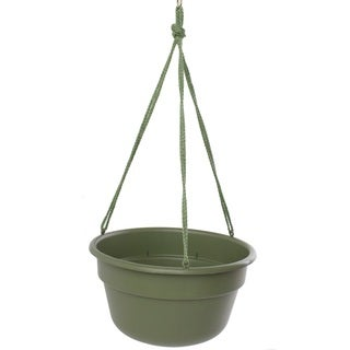 Bloem Dura Cotta Hanging Basket Living Green Planter (Pack of 12)