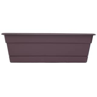 Bloem Dura Cotta Window Box Exotica Planter (Pack of 12)