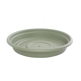 Bloem Dura Cotta Living Green Planter Saucer (Pack of 12)
