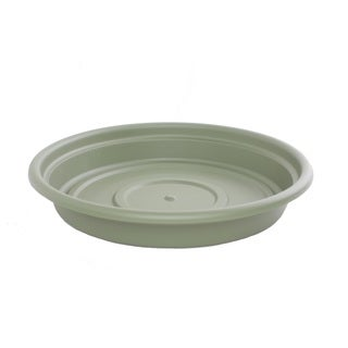Bloem Dura Cotta Living Green Planter Saucer (Pack of 6)
