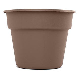 Bloem Dura Cotta Curated Planter (Pack of 6)