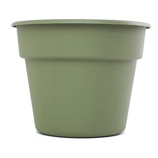 Bloem Dura Cotta Living Green Planter (Pack of 24)