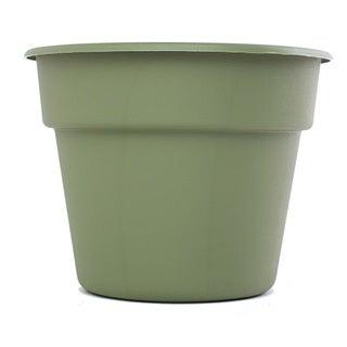 Bloem Dura Cotta Living Green Planter (Pack of 12)