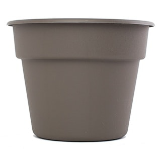 Bloem Dura Cotta Peppercorn Planter (Pack of 24)