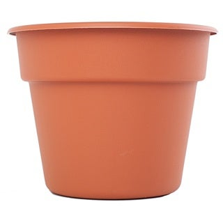 Bloem Dura Cotta Terra Cotta Planter (Pack of 12)|https://ak1.ostkcdn.com/images/products/9746084/P16919481.jpg?_ostk_perf_=percv&impolicy=medium