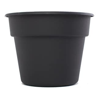 Bloem Dura Cotta Black Planter (Pack of 12)