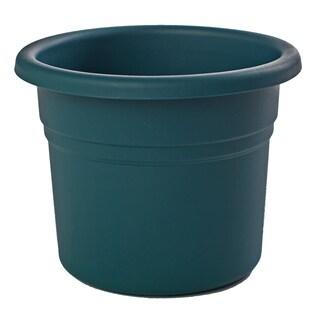 Bloem Posy Turbulent Planter (Pack of 12)