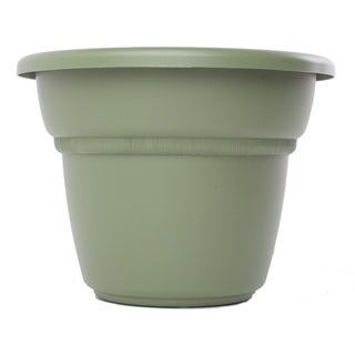 Bloem Milano Living Green Planter (Pack of 6)