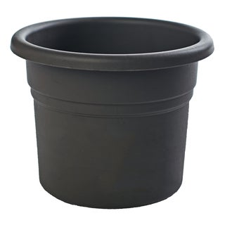 Bloem Posy Black Planter
