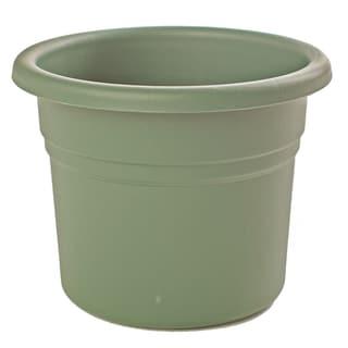 Bloem Posy Living Green Planter (Pack of 18)