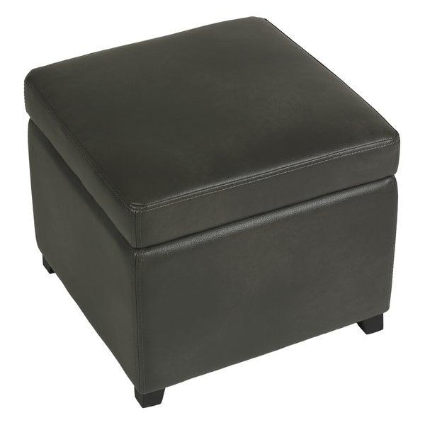 Shop Cortesi Home Massimo Grey Bonded Leather Storage