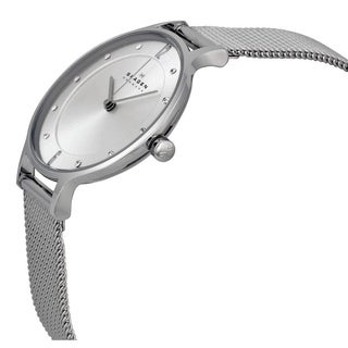 Skagen Women's SKW2149 Steel Mesh Watch