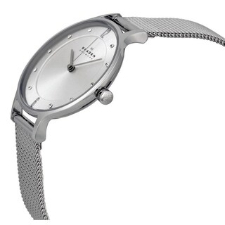 Skagen Women's SKW2149 Steel Mesh Watch - silver