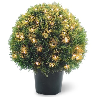 24-inch Cedar Pine Topiary with Round Green Growers Pot with 100 Clear Lights