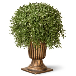 26-inch Argentia Plant with Gold Urn
