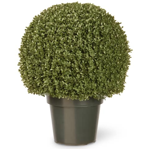 22-inch Mini Boxwood Ball with Green Pot