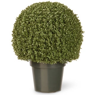 Link to 22-inch Mini Boxwood Ball with Green Pot Similar Items in Decorative Accessories