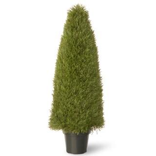 48-inch Unpright Juniper with Green Pot
