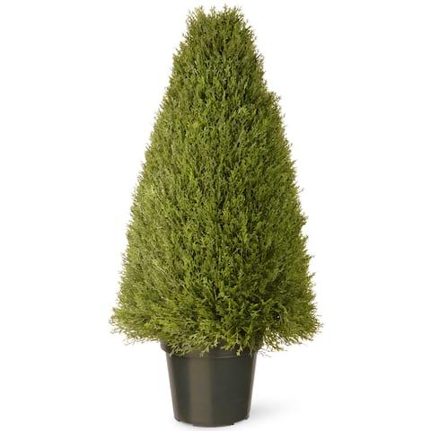36-inch Unpright Juniper with Green Pot