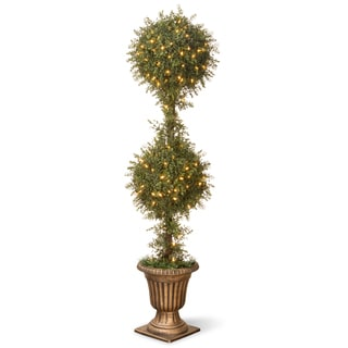 60-inch Mini Tea Leaf Topiary in Urn with 200 Clear Lights