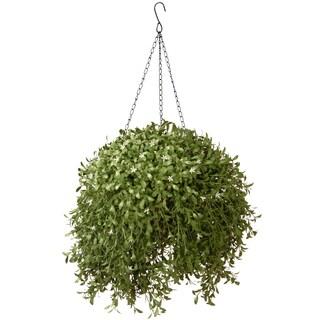 18-inch Argentea Hanging Basket