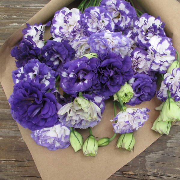 The Bouqs Volcano Collection 'Charmed I'm Sure' Deluxe Lisianthus Bouquet