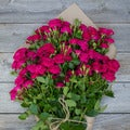 The Bouqs California Collection 'That's Hot' Deluxe Spray Rose Bouquet