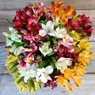 The Bouqs California Collection 'Prism' Deluxe Alstroemeria Bouquet