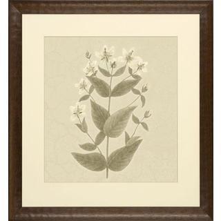 Blooms on Crackled Cream Framed Art Print