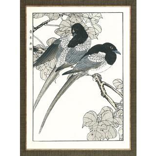 Aviary Woodblock Prints Two Bird Framed Art Print