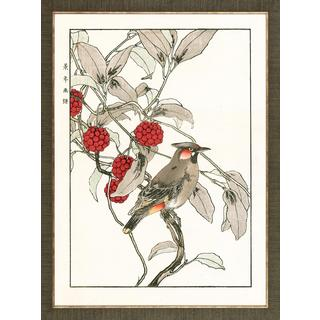 Bird and Berry Aviary Woodblock Prints Framed Art Print