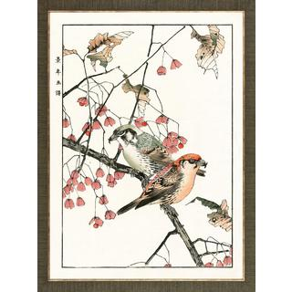 Aviary Woodblock Prints Framed Art Print