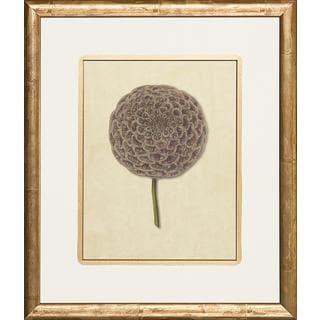 Grey Floricultural Cabinet Framed Art Print
