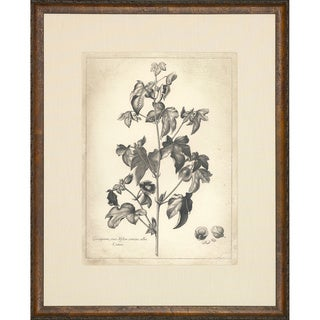 'Etched Floral' Framed Art Print