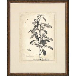 'Etched Floral' Cream Matte Framed Art Print - multi