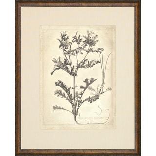 'Etched Floral' Framed Vintage Art Print