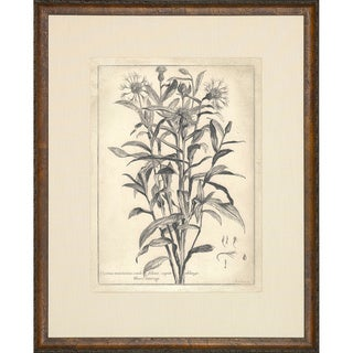 'Etched Floral' Brown Framed Vintage Art Print