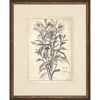 'Etched Floral' Brown Framed Vintage Art Print