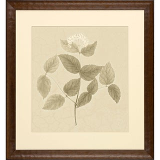 'Blooms on Crackled Cream' Framed Art Print