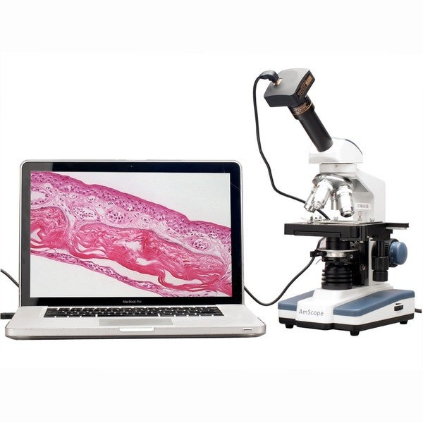 AmScope 40x-2000x LED Monocular Digital Compound Microscope with 3D Stage with 5MP USB Camera