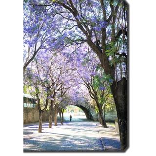 Purple Flowers in Seville, Spain' Photography Canvas Art