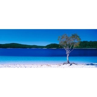 Haim Laferie 'Paradise Beach' Plexi Photography