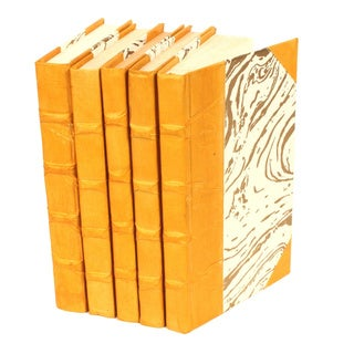 Parchment Collection Mustard Decorative Books (Set of 5)