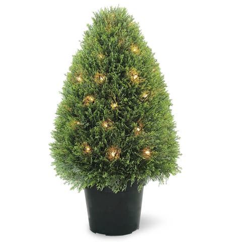 Upright Juniper Tree with 50 Clear Lights