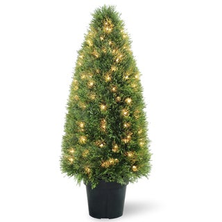 Upright Juniper Tree with 70 Clear Lights