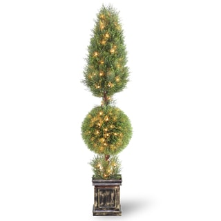 Juniper Cone and Ball Topiary Tree with Black Square Pot and 150 Clear Lights