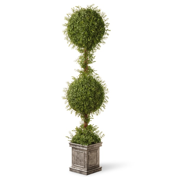 Mini Tea Leaf Two-ball Topiary Tree in Silver Square Pot. Opens flyout.